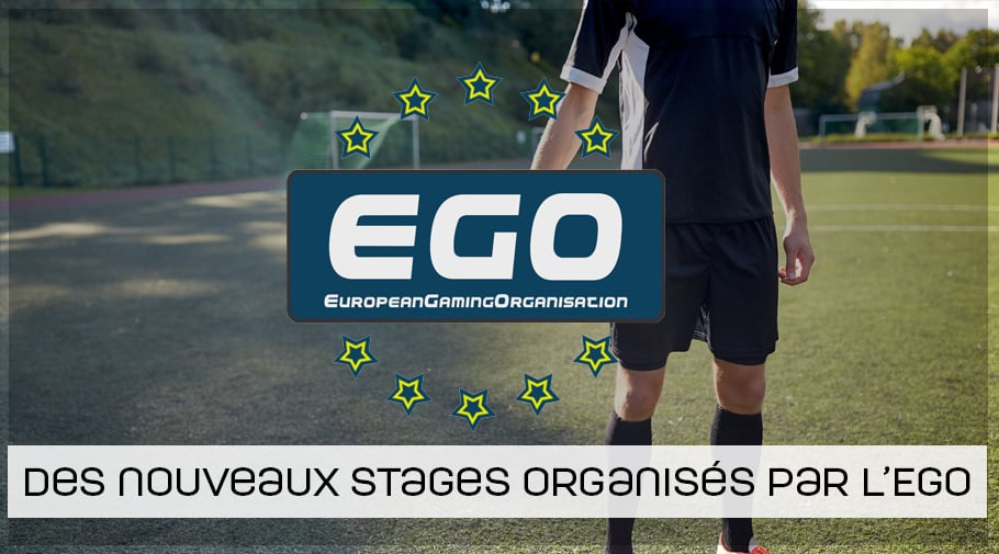 Stages FIFA 19 Carnaval - Paques organisés par l'EGO