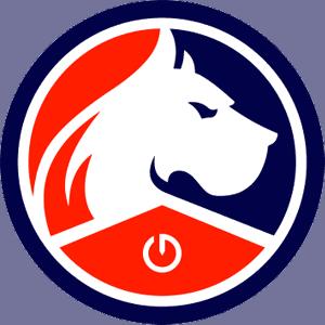 Logo_Lille_esport
